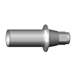 C-008-030001 | ICX-Plastic Abutment